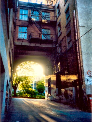Heroin Alley Reference Photo